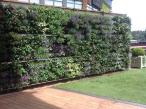 Picture of planted wall